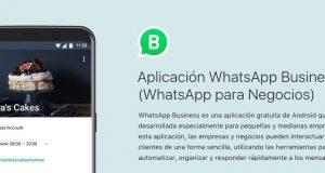Cómo conseguir un número virtual para WhatsApp Business
