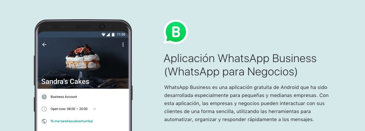 Cómo conseguir un número virtual para WhatsApp Business