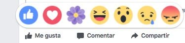 flor morada gracias facebook