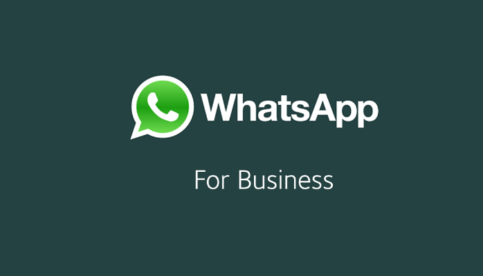 Descargar WhatsApp Business para Android APK WhatsApp Business 0.0.58 APK para Android