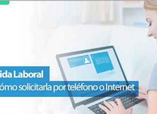 Cómo ver la vida laboral por Internet